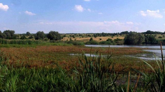 V-DNR-poyavitsya-novyiy-landshaftnyiy-park.jpg